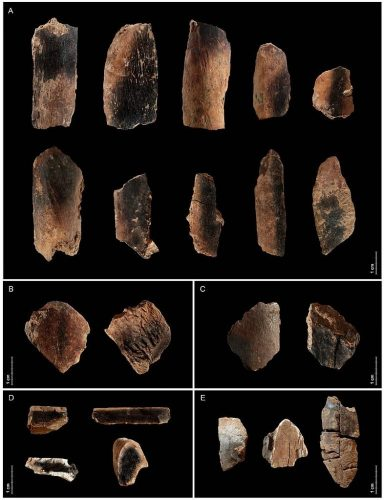 Qesem Cave in Israel, where these charred bits of animal bones were found, is one of the earliest known sites showing somewhat persistent fire usage by humans
