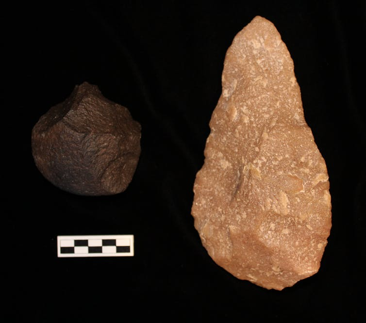 The more basic Oldowan chopper (left) and the more advanced Acheulian handaxe (right)