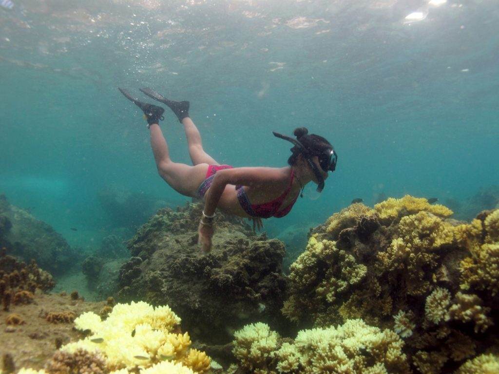 A diver in a healthier patch of coral