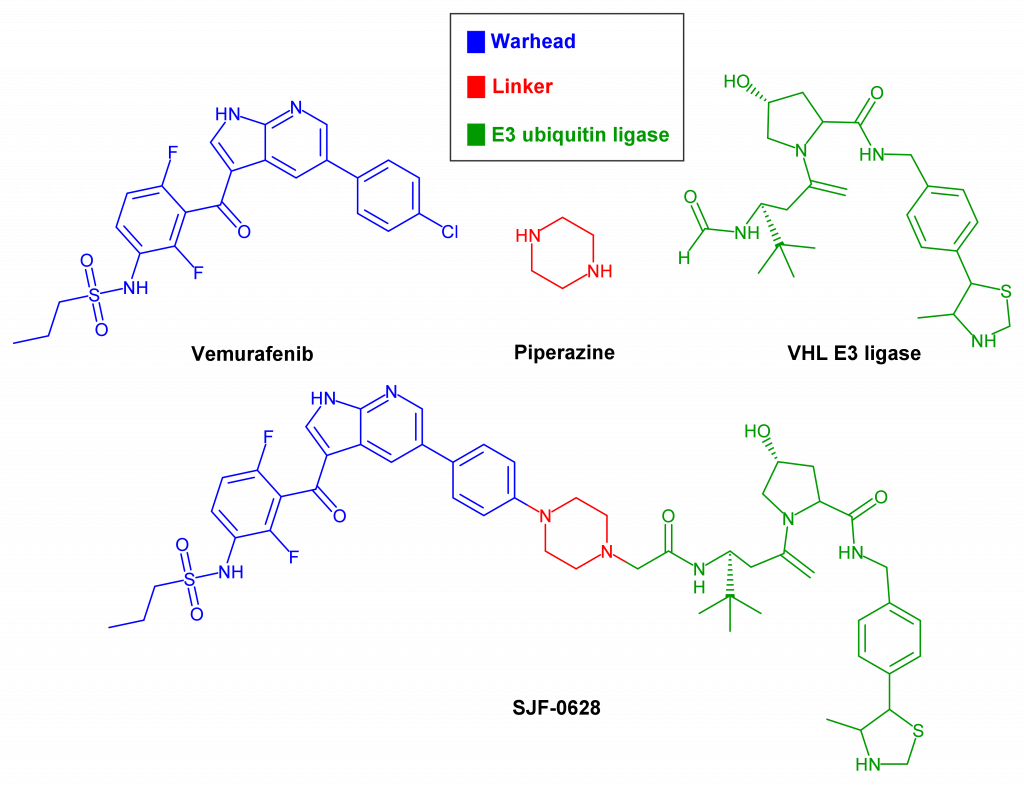Structure of PROTAC SJF-0628.
